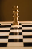 Chess board and piece Stock Image