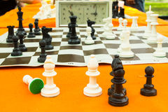 Chess board. And chess pieces Stock Photos