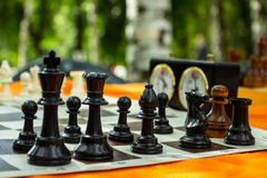 Chess board. And chess pieces Royalty Free Stock Image