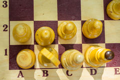 Chess board. And chess pieces Royalty Free Stock Photo