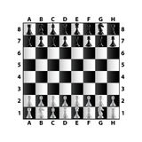 Chess board top view isolated on white vector Royalty Free Stock Photography
