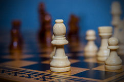 Chess on the board Royalty Free Stock Photography