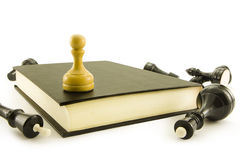 Chess and book. Chess lay around of the book on which there is a pawn Royalty Free Stock Images