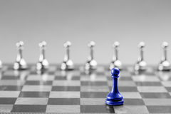 Chess business concept, leader & success Royalty Free Stock Image