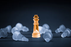 Chess business concept. Royalty Free Stock Photo