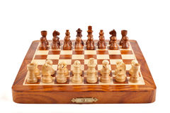 Chess on chessboard Stock Image