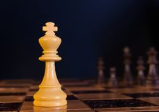 Chess on a chessboard. Chess photographed on a chessboard with creative background Royalty Free Stock Photography