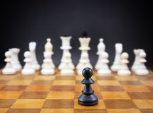 Chess on chessboard Stock Photos