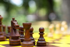 Chess on a chessboard in the park. Horse close-up Royalty Free Stock Photos