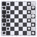 Chess on the chessboard Stock Photography