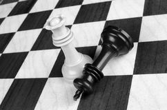Chess competition Stock Photography