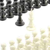 Chess conception: opposition and competition. White and black kings and pawns royalty free illustration