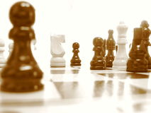 Chess Core Stock Photography