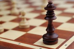 Chess desk. Chess figure stay on a desk royalty free stock image