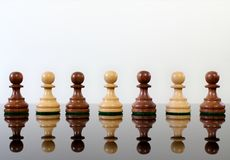 Chess diversity Royalty Free Stock Images