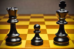 Chess family Royalty Free Stock Images