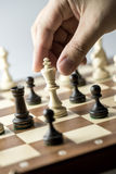 Chess figure, business concept strategy, leadership, team and su Royalty Free Stock Images