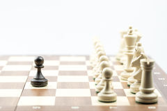 Chess figure, business concept strategy, leadership, team and su Stock Images