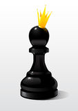 Chess figure a pawn in the image of the Queen Royalty Free Stock Photography