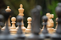 Free Chess Figures Royalty Free Stock Photography - 11916837