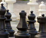 Chess Figures. Detail of some outdoor chess figures Stock Photography