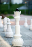 Chess figures outdoor. Stock Images