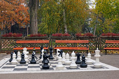 Chess figures in park Stock Photo