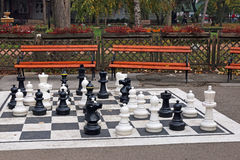 Chess figures in park Royalty Free Stock Photos