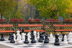 Chess figures in park autumn season Stock Photography