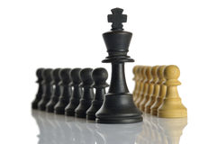 Chess game. Closeup of some chess figures on white background Stock Images