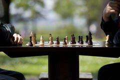 Chess game. In the park stock photo