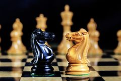 Chess Game Black and White Knights Face to Face royalty free stock images