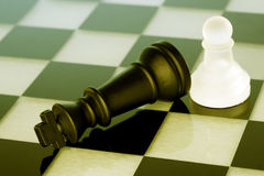 Chess game-Checkmate Royalty Free Stock Image