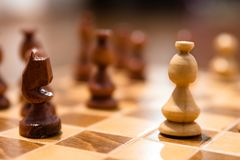 Chess game. Detail of two pieces of chess. A horse and a crazy Royalty Free Stock Photos