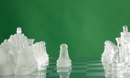Chess game figures on green background Stock Photos
