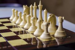 Chess game, horse is the piece in focus. The beginning of the chess game. Difficult strategy, non-standard thinking.A game for intellectuals stock photo