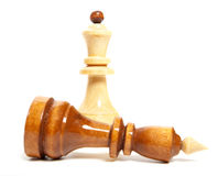 Chess game isolated Royalty Free Stock Photos