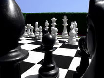 Chess in a garden Stock Photography
