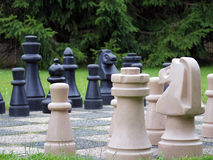 Chess in the garden Royalty Free Stock Photography