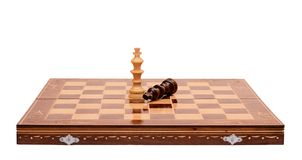 Chess give up Royalty Free Stock Image