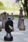 Chess great outdoors in a park Royalty Free Stock Photography