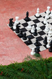 A chess great Royalty Free Stock Photo