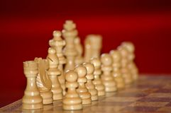 Chess guard Royalty Free Stock Image
