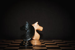 Chess horse. On the board Royalty Free Stock Image