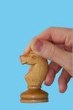 Chess  horse  hand Stock Image