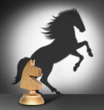 Chess horse with  shadow as a wild horse Stock Photos