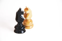Chess Horses In Love. Conceptual photo of two chess pieces (toy horses) against a white background Stock Photography