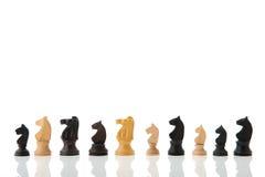 Chess horses Royalty Free Stock Photo