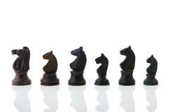 Chess horses Royalty Free Stock Photos