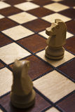 Chess horses. The rule of movement for horse on a chessboard Stock Image